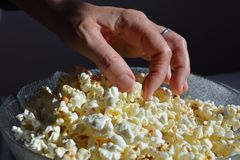 Woman eating a bowl of plain popcorn. Healthy snacks. Close-up a woman's hand and a bowl of air-popped plain popcorn, a healthy whole grain food made from a royalty free stock photo