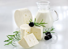 Healthy soft paneer cheese with rosemary and black olives Royalty Free Stock Image