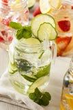 Healthy Spa Water met Fruit Stock Fotografie
