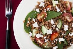 Healthy Spelt Salad Stock Image
