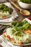 Healthy Spinach Egg White Omelette Royalty Free Stock Photography