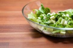 Healthy spring dish Stock Image