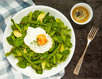 Healthy spring green salad with egg Royalty Free Stock Photos