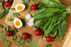 Healthy spring vegetables, sorrel, radish and eggs. On wooden table. Super food nutrition Stock Photo