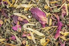 Healthy stomach herbal tea Royalty Free Stock Photo