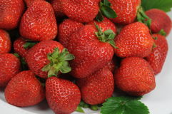 Healthy strawberries 2 Stock Image