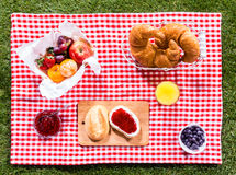 Healthy summer picnic Royalty Free Stock Photo