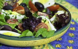 Healthy Summer Salad, Easy Preparation Stock Images