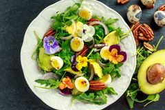 Healthy summer salad with quail eggs, avocado, pecans, wild rocket, red onion and edible viola flowers. Healthy summer salad with quail eggs, avocado, pecans stock photos