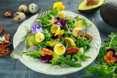 Healthy summer salad with quail eggs, avocado, pecans, wild rocket, red onion and edible viola flowers. Royalty Free Stock Image