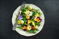Healthy summer salad with quail eggs, avocado, pecans, wild rocket, red onion and edible viola flowers. Royalty Free Stock Photography