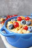 Healthy Tasty Homemade Oatmeal with Berries for Breakfast Royalty Free Stock Photos