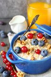 Healthy Tasty Homemade Oatmeal   Royalty Free Stock Images