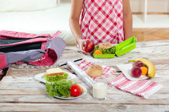 Healthy and tasty lunch box for child Stock Photography