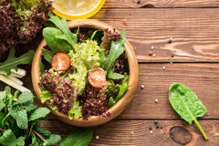 Healthy tasty salad with fresh greens and cherry tomatoes Royalty Free Stock Photography