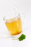 Healthy Tea. Fresh Ginkgo Biloba leaf with a glass of tea Royalty Free Stock Photo