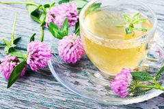 Healthy tea with clover. Cup of herbal tea made of wild clover.Asian herbal tea Royalty Free Stock Photos