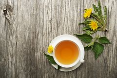 Healthy Tea with dandelion and nettle leaves Stock Photos