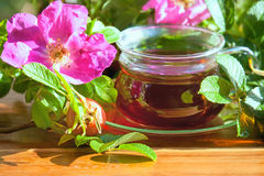 Healthy tea of dogrose berries. Royalty Free Stock Photos