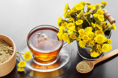 Healthy tea in glass cup closeup, bucket with coltsfoot flowers Royalty Free Stock Photography