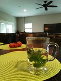 Healthy Tea. Mint Tea and Tomatoes in background. Healthy Living Royalty Free Stock Photography