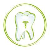 Healthy Teeth Stock Photography