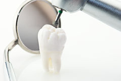 Healthy teeth concept Royalty Free Stock Image