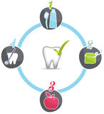 Healthy teeth recommendations wheel Royalty Free Stock Image