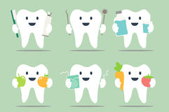 Healthy teeth set. Dental cartoon vector, healthy teeth set - dental collection for design Royalty Free Stock Image