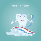 Healthy teeth.Vector illustration. Illustration for children dentistry and orthodontics. Image toothbrush, to Royalty Free Stock Photo