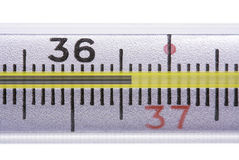 Healthy temperature Stock Image
