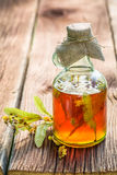 Healthy tincture in bottles as homemade cure Royalty Free Stock Photography