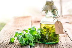 Healthy tincture in bottles as natural medicine. On old wooden table Stock Image
