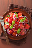 Healthy tomato salad with onion basil olive oil and balsamic vin Royalty Free Stock Photography