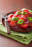 Healthy tomato salad with onion basil olive oil and balsamic vin Royalty Free Stock Photos