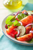 Healthy tomato salad with onion cucumber pepper Stock Image