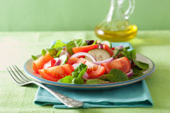 Healthy tomato salad with onion cucumber pepper Stock Images