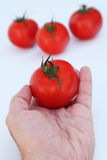 Healthy tomatoes Stock Photo