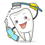Healthy tooth. Holding a toothbrush and a Stock Photos
