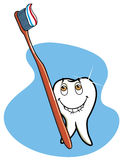 Healthy tooth. Healthy happy tooth with toothpaste Royalty Free Illustration