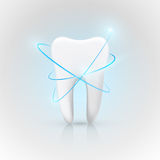 Healthy Tooth Under Protection, Teeth Whitening. Vector illustration Stock Photos