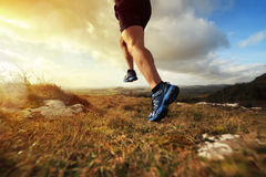 Healthy trail run royalty free stock image