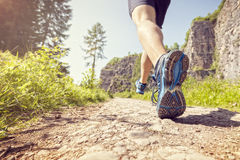 Healthy trail run Royalty Free Stock Photography