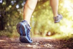 Healthy trail running royalty free stock images