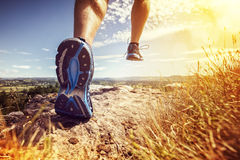 Healthy trail running. Outdoor cross-country running in summer sunshine concept for exercising, fitness and healthy lifestyle Stock Photos