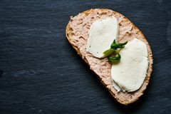 Tuna sandwich. Healthy Tuna fish organic sandwich and slices of mozzarella on black slate stock photos