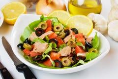 Healthy tuna salad Stock Image