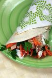 Healthy Tuna Sandwich Wrap Royalty Free Stock Photography