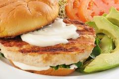 Healthy turkey burger Stock Photography