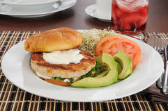 Healthy turkey burger Royalty Free Stock Photo